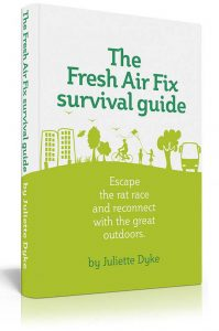 Fresh Air Fix book cover design