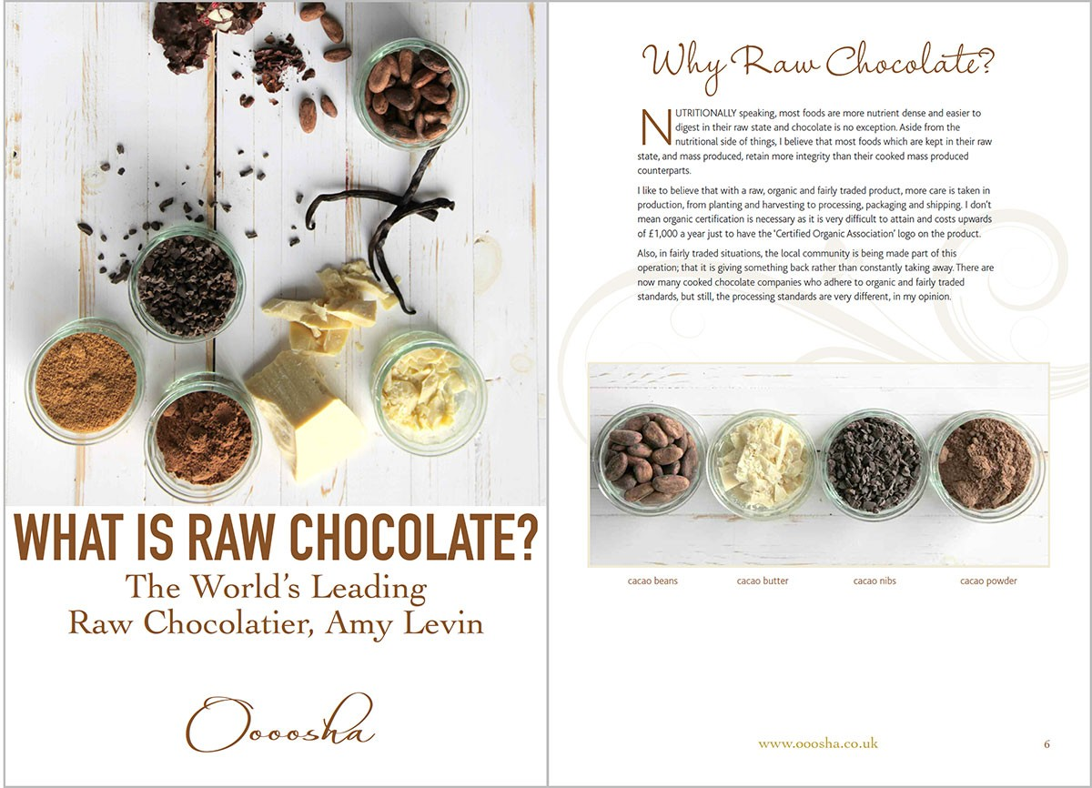 Raw Chocolate PDF ebook